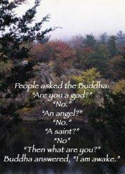 Namaste therapy